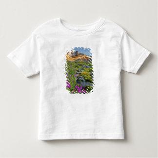 USA Mount Rainier nationalpark, Washington. T-shirt