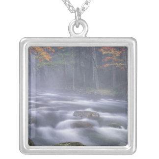 USA New York, Adirondacks, stor älgflod Silverpläterat Halsband