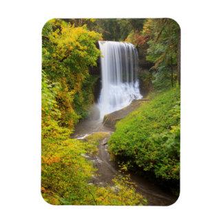 USA Oregon, silvernedgångdelstatspark 3 Magnet