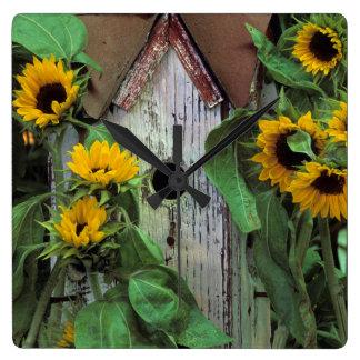USA Pennsylvania. Birdhouse och trädgård Fyrkantig Klocka