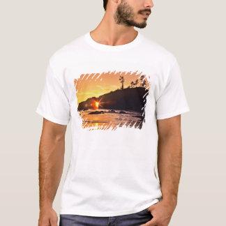 USA stat Washington, olympisk nationalpark. 3 T Shirts