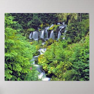 USA stat Washington, vildmark för Mt Adams. Tvilli Poster