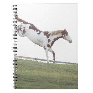 USA statliga New York, Hudson, hästbanhoppning in Anteckningsbok