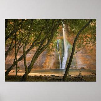 USA Utah, Escalante vildmark. En beskåda av Poster