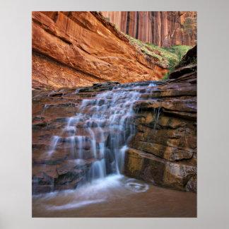 USA Utah, Escalante vildmark.  Vattenfall in Poster