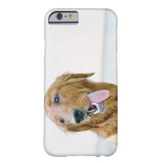 USA Utah, Salt Lake City, halva rakade guld- Barely There iPhone 6 Fodral