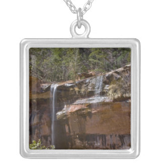USA Utah, Zion nationalpark, vattennedgångar på Silverpläterat Halsband