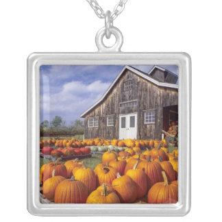 USA Vermont, Shelbourne, pumpor Silverpläterat Halsband