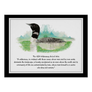 USA vildmarken agerar citationstecknet, Poster