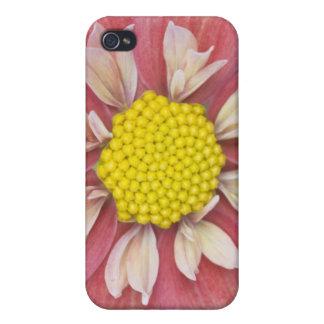 USA Washington, Bellevue, botaniska Bellevue iPhone 4 Hud