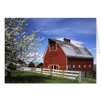 USA Washington, Ellensburg, ladugård Hälsningskort