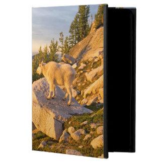 USA Washington, kaskad spänner 4 Fodral För iPad Air