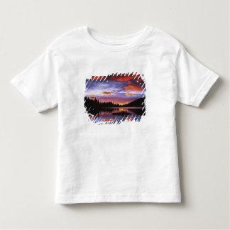 USA Washington, Mount Rainier nationalpark, Tshirts