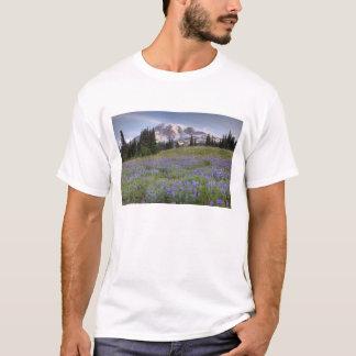 USA Washington, Mount Rainier NP, Mount Rainier Tee