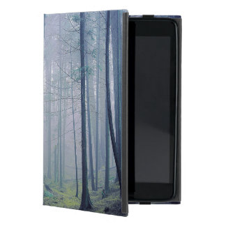 USA Washington, Orcasö, Moran delstatspark iPad Mini Skydd