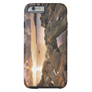 USA Washington, San Juan öar.  Dramatiska 2 Tough iPhone 6 Fodral