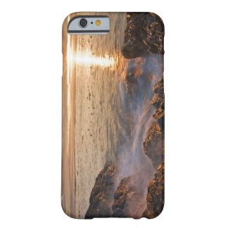 USA Washington, San Juan öar.  Ett dramatiskt Barely There iPhone 6 Skal