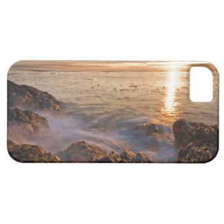 USA Washington, San Juan öar.  Ett dramatiskt iPhone 5 Case-Mate Fodral