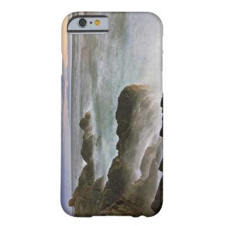 USA Washington, San Juan öar.  Vinkar krasch Barely There iPhone 6 Fodral