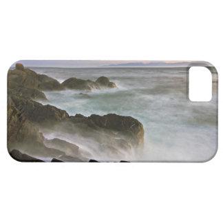 USA Washington, San Juan öar.  Vinkar krasch iPhone 5 Case-Mate Skydd