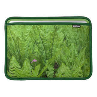 USA Washington, Seattle, Washington parkerar MacBook Sleeve