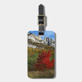 USA West Virginia, Spruce Knopp-Seneca stenar Bagagebricka