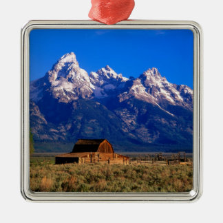 USA Wyoming, storslagen Teton nationalpark, morgon Julgransprydnad Metall