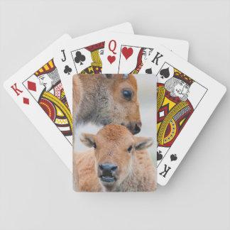 USA Wyoming, Yellowstone nationalpark, a-bison Spel Kort