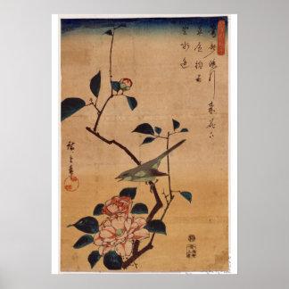 Utagawa Hiroshige, Camellia och Bush sångare, 1844 Poster