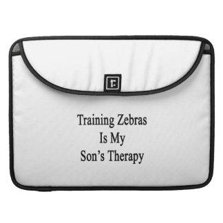 Utbildning av zebror är min sons terapi