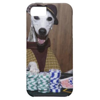 Utklädd Whippet hund på dobbleribord iPhone 5 Case-Mate Skal