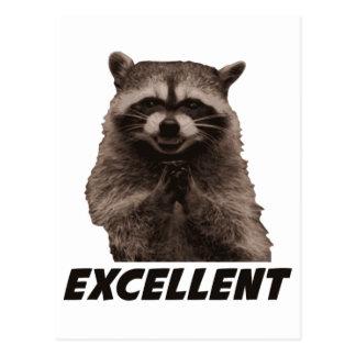 Utmärkt ond konspirera Raccoon Vykort
