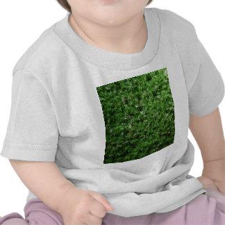 Utomhus- botanisk grön slipad Mossnaturväxt Tee Shirts