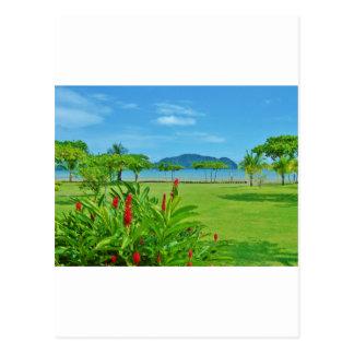 Utomhus- Costa Rica strand Vykort