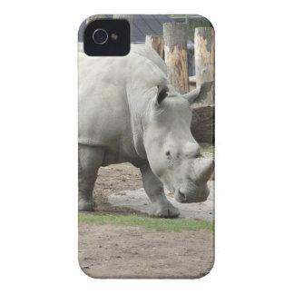 Utsatte för fara nordliga vitRhinos iPhone 4 Case
