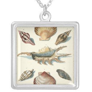 Utsmyckad snäckastrand silverpläterat halsband