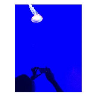 UV manet Vykort