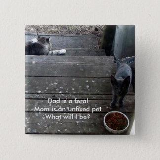 """""""Vad ska, är I?"""", den vilda kattungen knäppas Standard Kanpp Fyrkantig 5.1 Cm"""