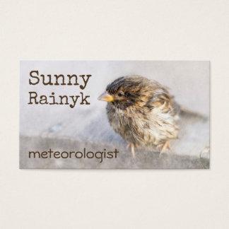 Väder förutsedd rolig anpassade visitkort
