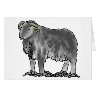 Väduren rammar kortet för Herdwick fårkonst Hälsningskort