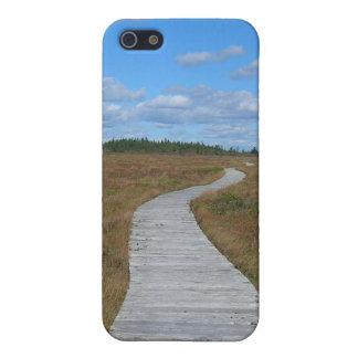 Väg till himmlen iPhone 5 cover