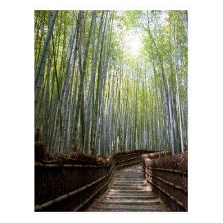 Väg till och med bambun vykort