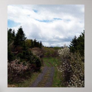 Vägen som fjädrar affischen posters