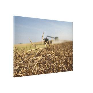 Vagn för korn för Canola skördsammanslutning Canvastryck