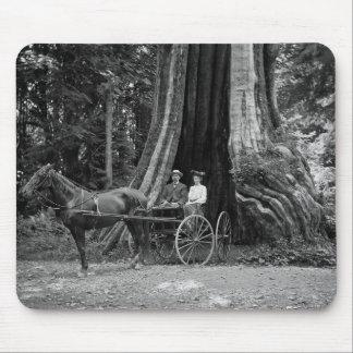 Vagn i det ihåliga träd musmatta