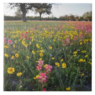 Vägrenvildblommar i Texas, vår 3 Stor Kakelplatta