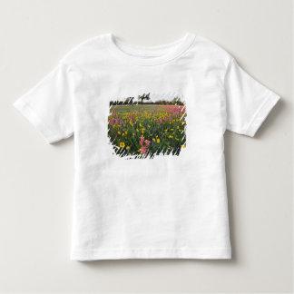 Vägrenvildblommar i Texas, vår 3 T-shirt