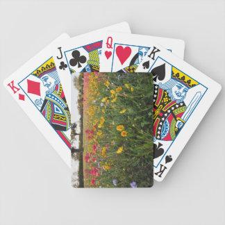 Vägrenvildblommar i Texas, vår Spelkort