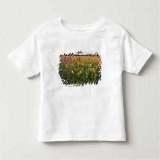 Vägrenvildblommar i Texas, vår Tee Shirt