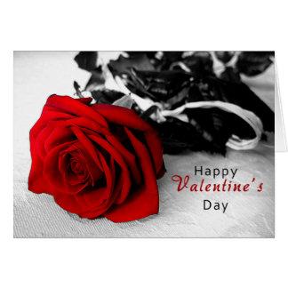Valentin dagkort - svart & vit ros hälsningskort